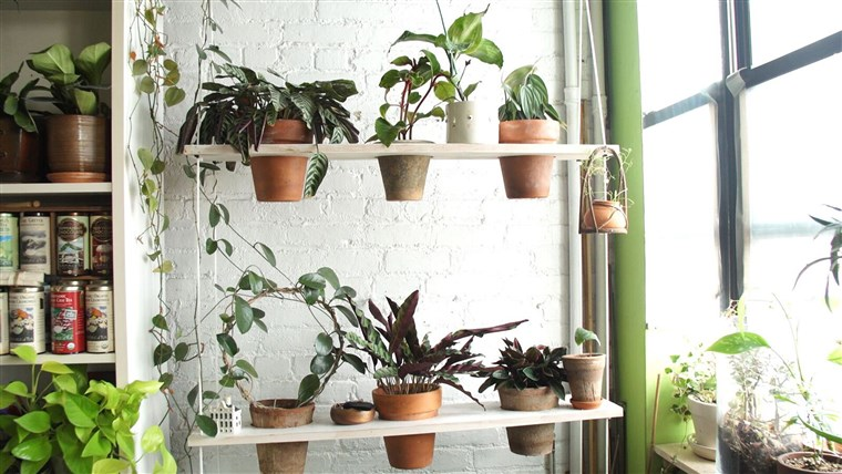 Oakes' makes the most of her limited space by building low-cost projects like this vertical swing garden.