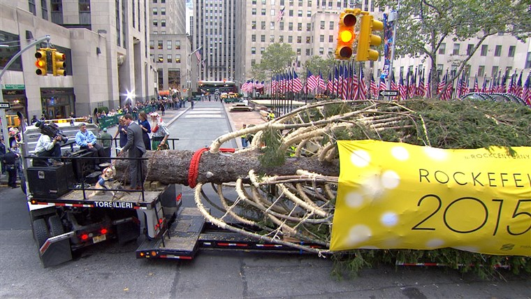 2015年 Rockefeller Center Christmas tree