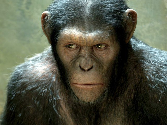 GAMBAR: Rise of the Planet of the Apes