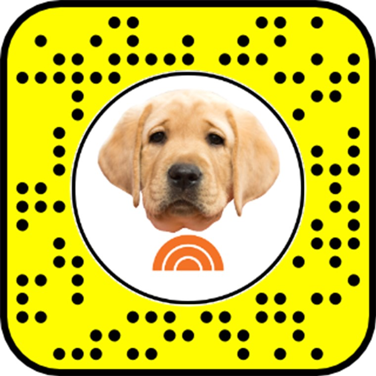 Sbloccare the TODAY Puppy Snapchat Lens